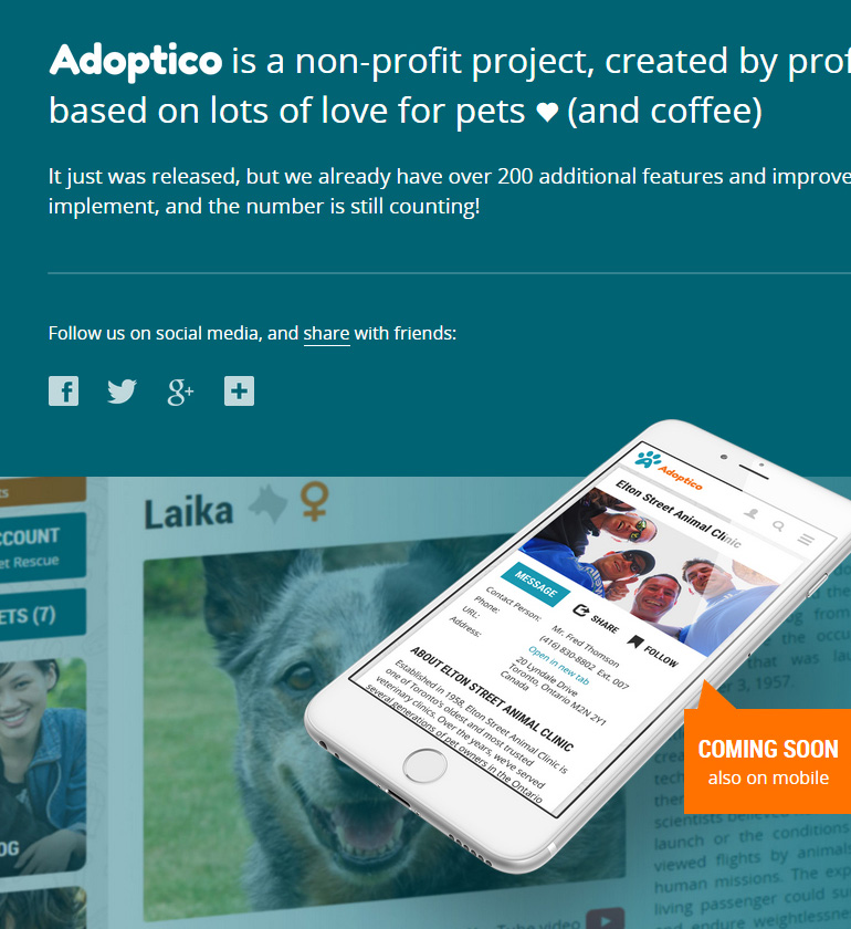 Design of Adoptico – Intro by Dennis Pishev